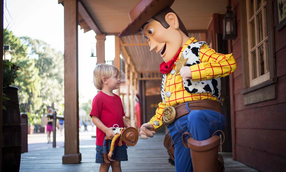 Disney Gallery Toy Story Woody