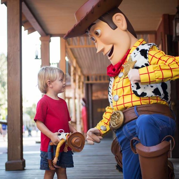 Disney Gallery Toy Story Woody 600×600